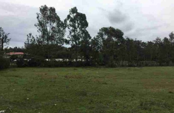 1/2 an acre for sale in Karen