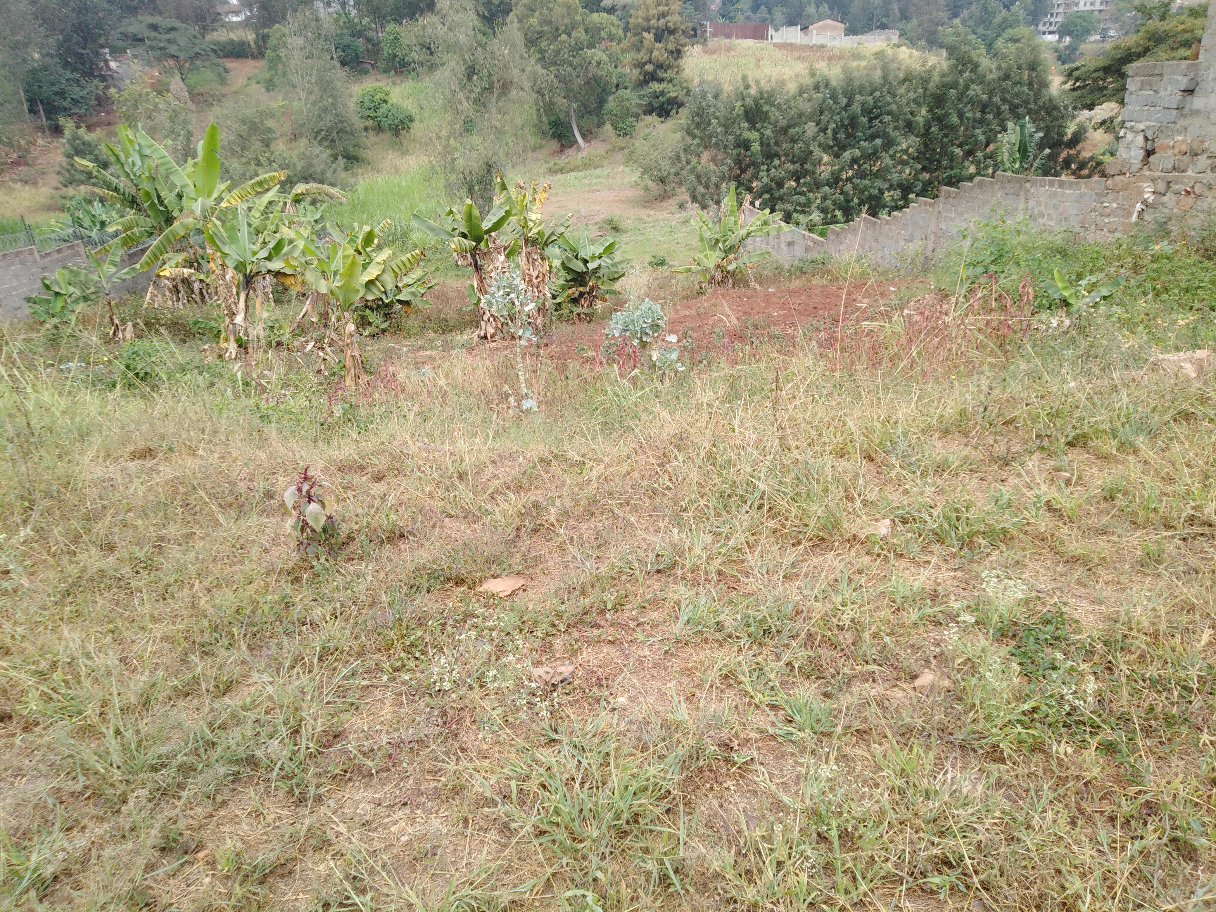 1/2 acre plot for sale in Kiambu road