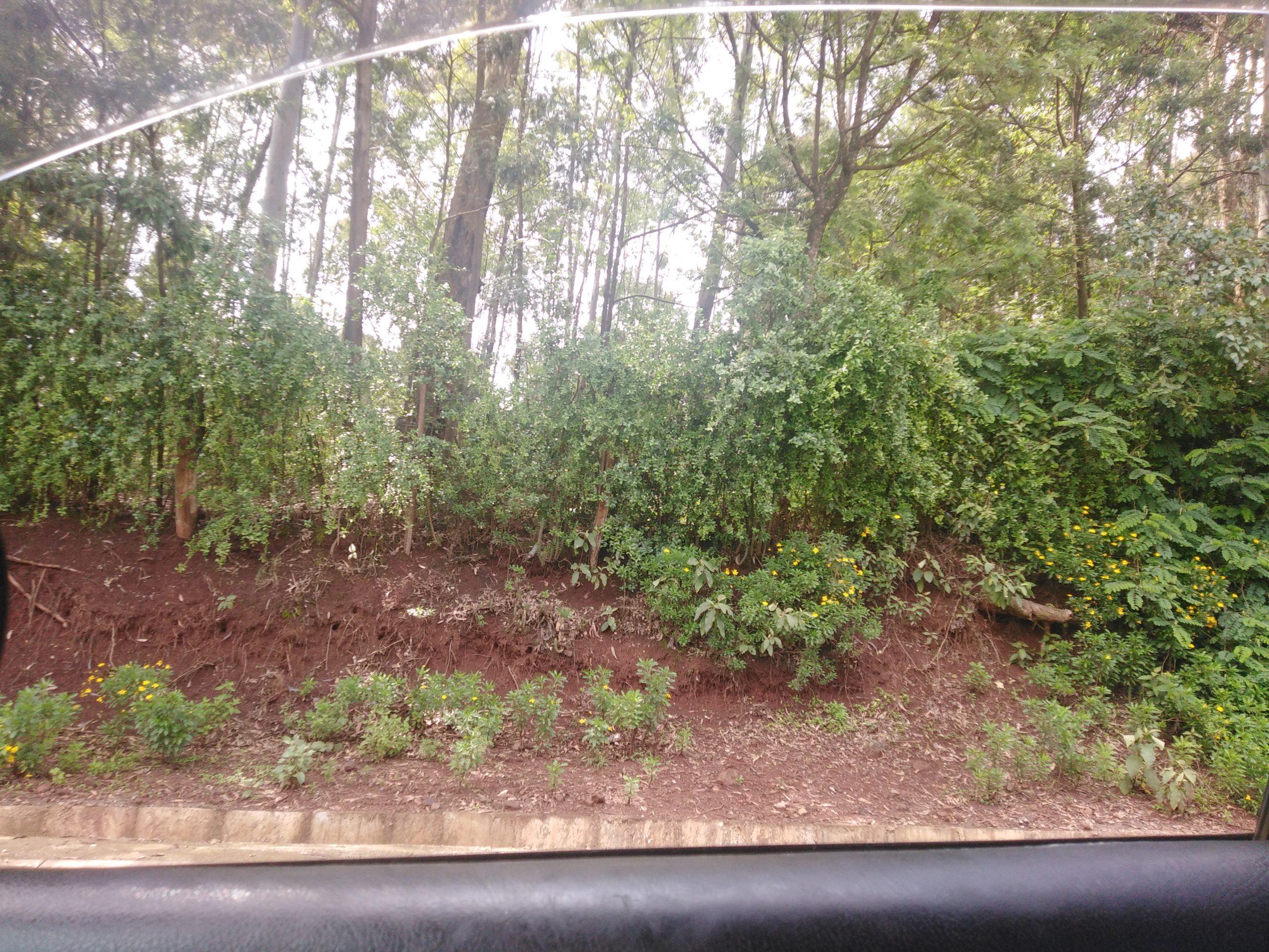 2 acre land for sale in Kikuyu